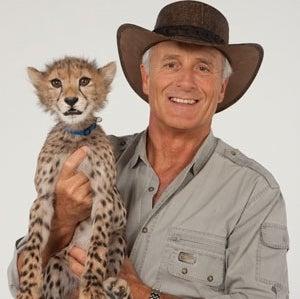 Jack Hanna - Cheetah.jpg